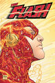 Flash Wally West 0014
