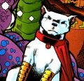 Krypto DC One Million 001