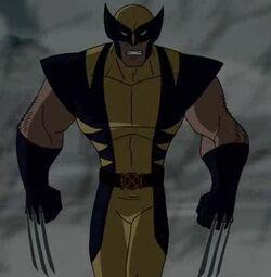 Wolverine WXM