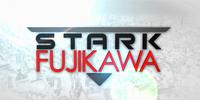 Stark-Fujikawa