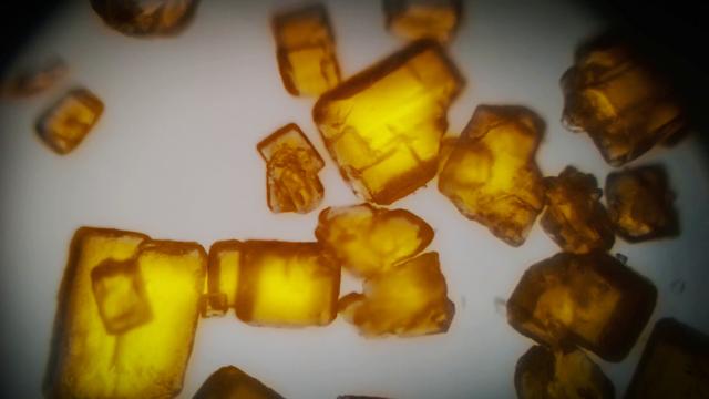 File:Microscope nitramene.png