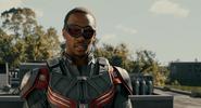 Falcon Ant-Man 5