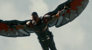 Falcon Ant-Man 7