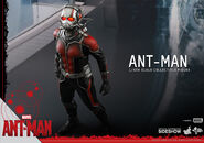 Ant-Man Hot Toys 10