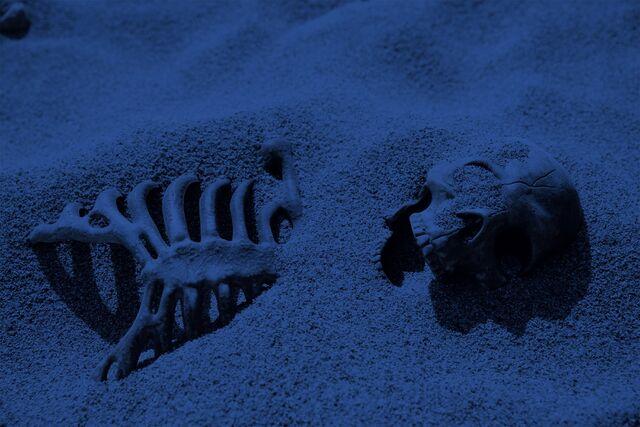 File:Planet Skeleton.jpg