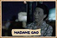 Card17-Madame Gao