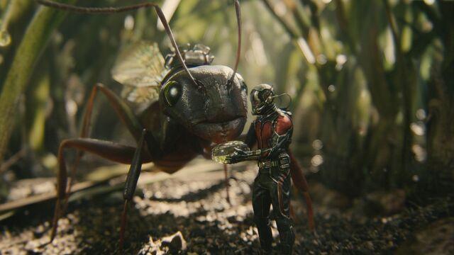 File:Ant-Man screenshot 2.jpg