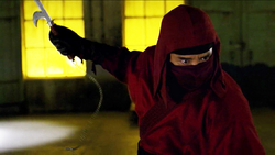 Ninja Nobu