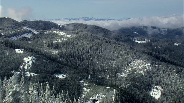 File:Providence Wilderness.png