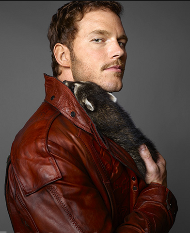 File:Star-Lord EW raccoon.png