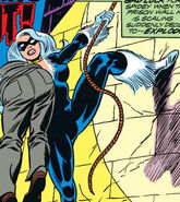 Felicia Hardy (Earth-616) from Amazing Spider-Man Vol 1 195 001