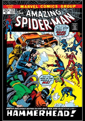 Amazing Spider-Man Vol 1 114