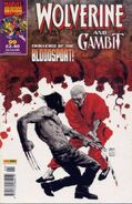 Wolverine and Gambit Vol 1 99