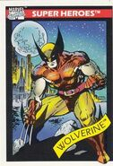 James Howlett (Earth-616) from Marvel Universe Cards Series I 0001