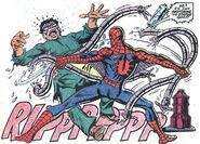 Peter Parker The Spectacular Spider-man Vol 1 75 0001