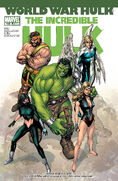 Incredible Hulk Vol 2 109