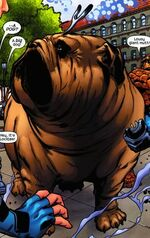 Lockjaw (Earth-20051) Marvel Adventures Fantastic Four Vol 1 8