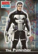 Frank Castle (Earth-616) from Marvel Legends (Trading Cards) 0001