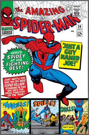 Amazing Spider-Man Vol 1 38