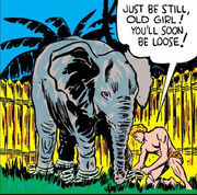 David Rand (Earth-616) from Marvel Mystery Comics Vol 1 3 0001