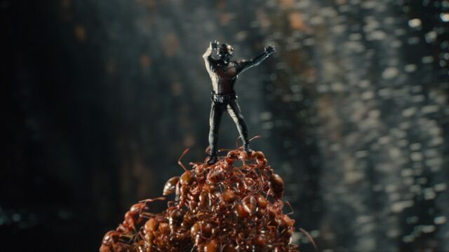 File:Ant-Man and Ants 02.jpg