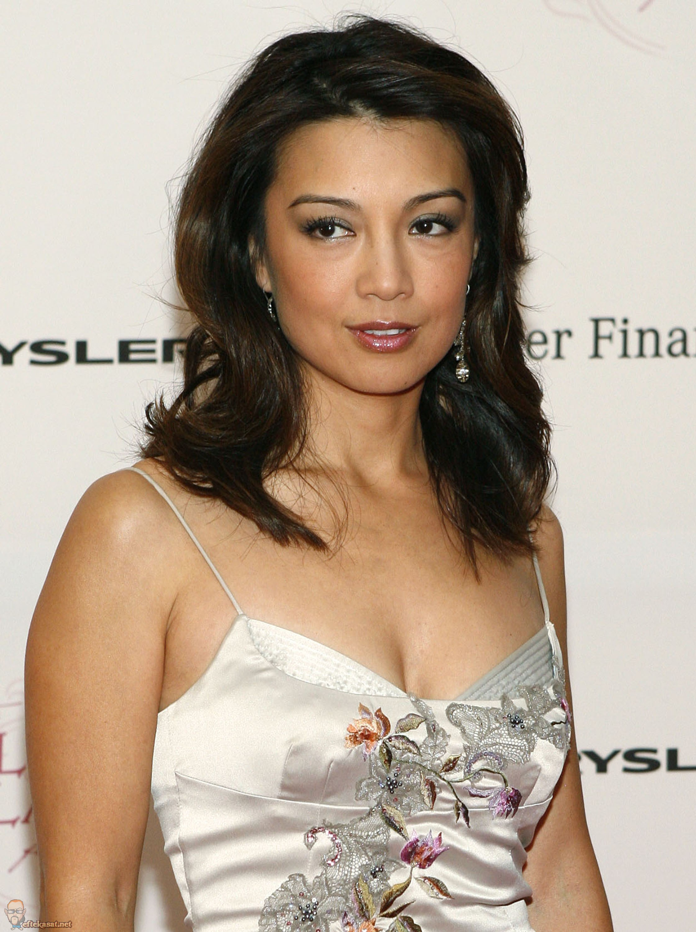 Ming-Na Wen | Marvel Movies | Fandom powered by Wikia