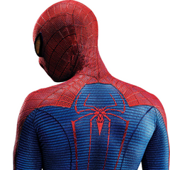Spider-Man back view.