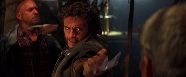 File:Wolverine101.JPG