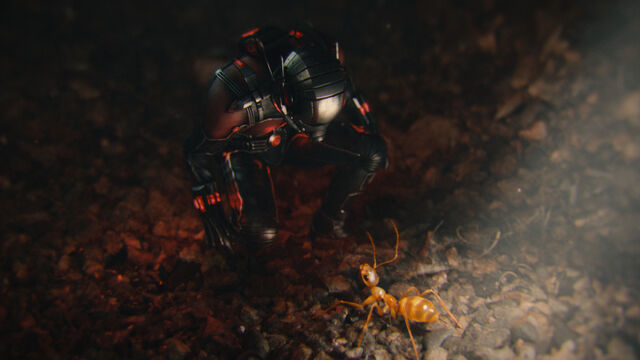 File:Ant-Man talking to an ant.jpg