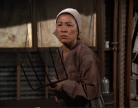 Angry Mrs. Li
