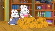Max Ruby perfect pumpkin