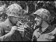 Gomer Pyle, USMC 1x11....They Shall Not Pass....(b59) - (DVD).avi 000171759
