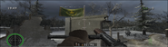 CS CTF Allies