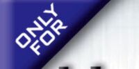 Mega Man Battle Network (video game)