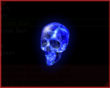 Water Crystal Skull IS