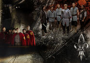 Series 4 Knights