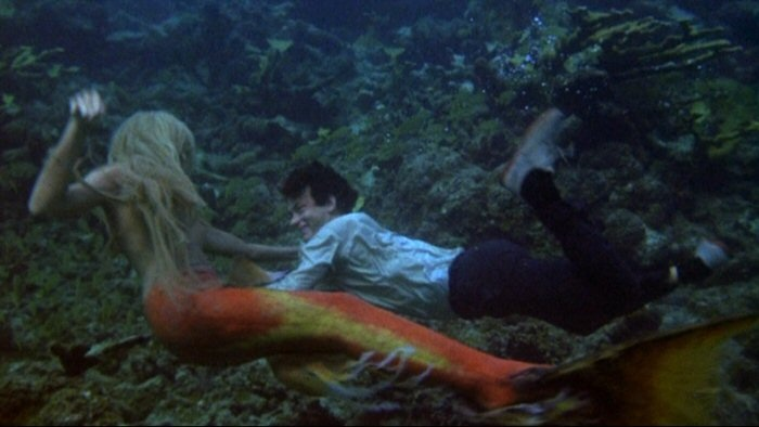 Are Mermaids Real 11 Myths the US Government Has
