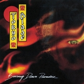 Tokyo Blade - Burning down paradise