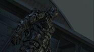 Skull Armor