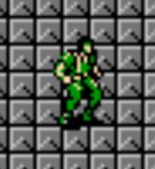 NES Snake