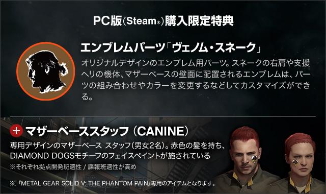 File:Steam w soldier.jpg