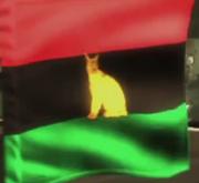 MGR flag