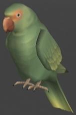 File:MGS2 Parrot.jpg