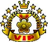 MSA VIP