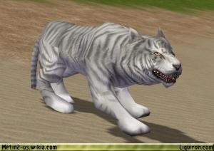 File:Hungry White Tiger 2.jpg