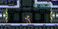 Yellow Hatch (Metroid Fusion)
