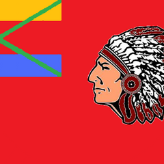 1st State Flag of Seminole