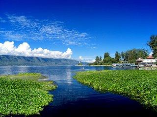 File:Toba lake-1-.jpg