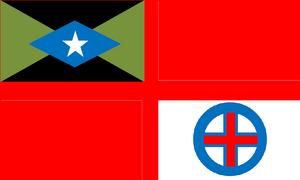 RDNAF-Flag