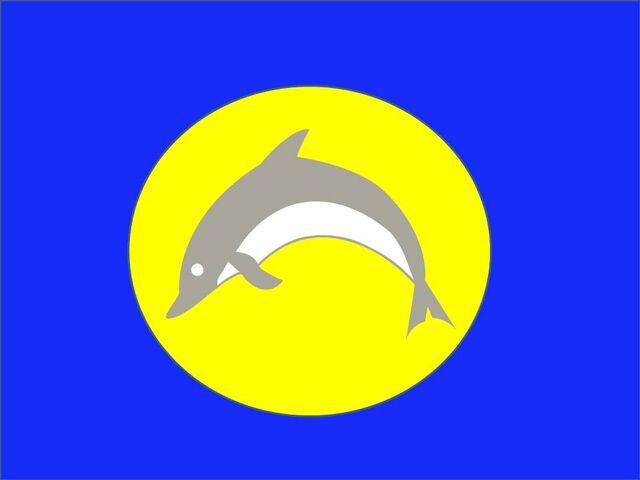 File:Joes flag.jpg